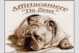 Foto Appartamenti Da Zeus - Cisanello